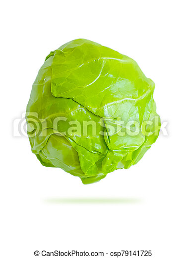 cabbage on a white background, isolated - csp79141725