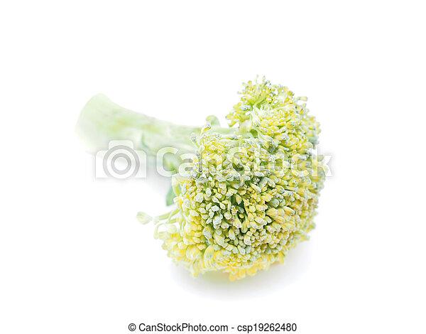 cabbage on white background - csp19262480
