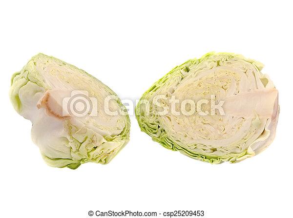 cabbage on white background - csp25209453