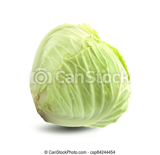 cabbage on white background - csp84244454
