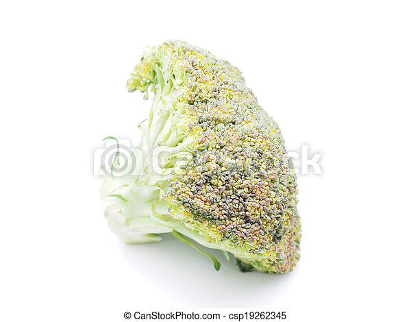 cabbage on white background - csp19262345