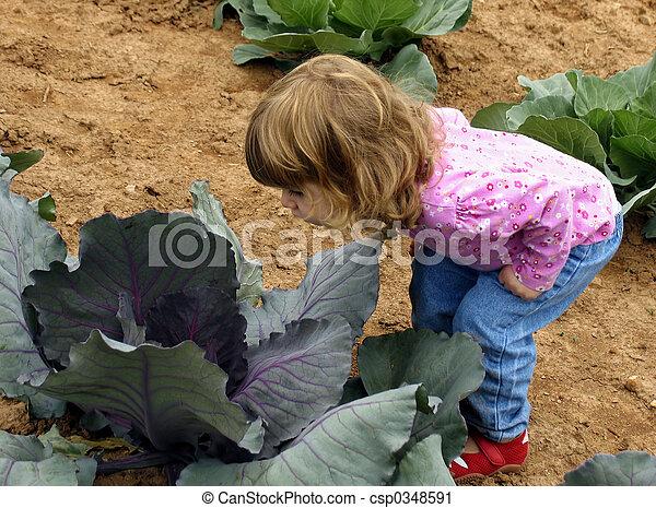 Cabbage patch child - csp0348591