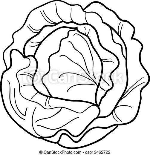 cabbage vegetable cartoon for coloring book - csp13462722