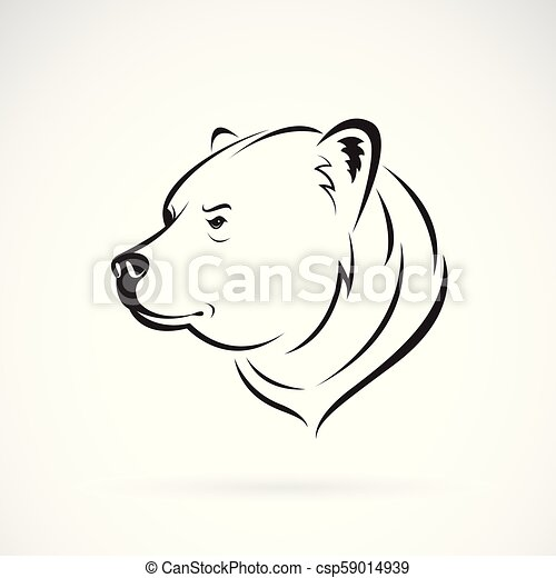 Cabeca Vetorial Illustration Editable Urso Animals Layered