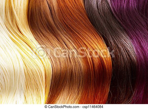 cabelo, cores, paleta - csp11464084