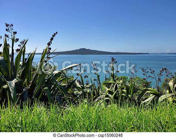 Desde la cabeza norte de Auckland hasta la isla de Goitoto - csp15060248
