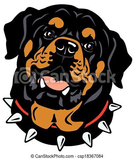 Cabeza de Rottweiler - csp18367084