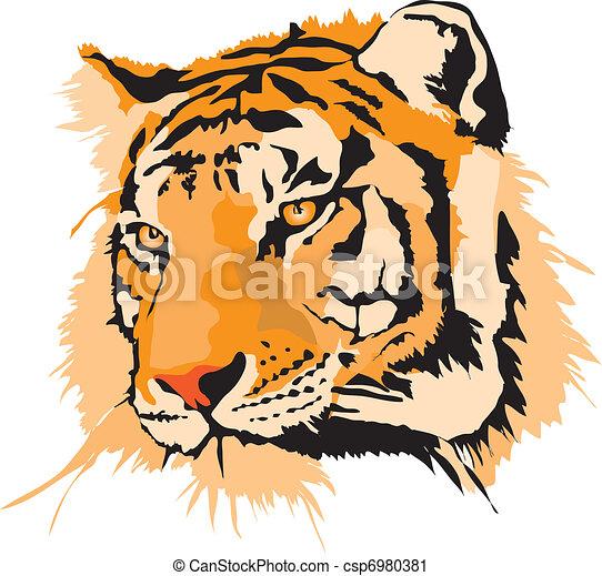 Una cabeza de tigre - csp6980381