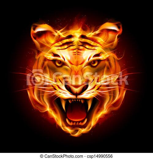 Cabeza de tigre en llamas - csp14990556