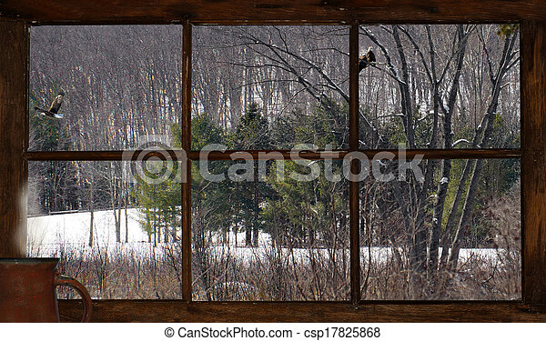 Cabin view in winter. - csp17825868