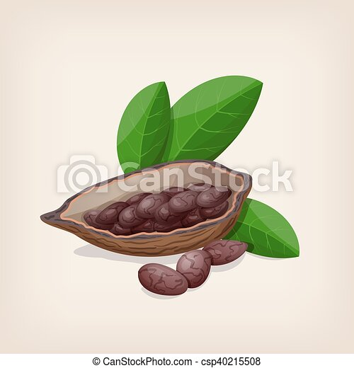 Cacao pods and beans with leaves. Vector illustration. - csp40215508