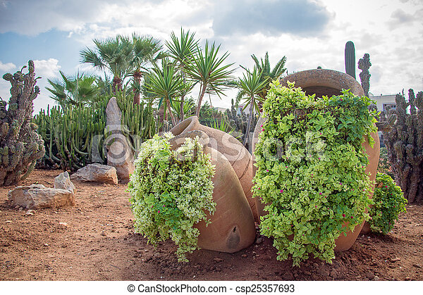 Cacti and palm trees in the garden. - csp25357693