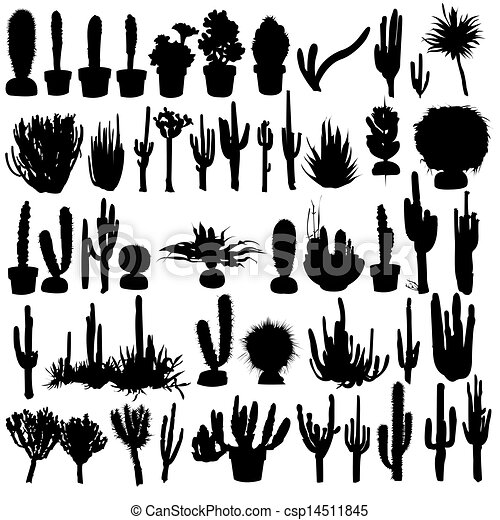 Un set de cactus - csp14511845