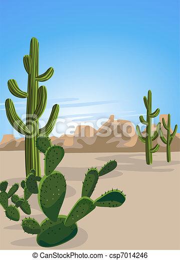 Cactus and Desert  - csp7014246