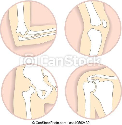 Cadera, hombro, centro, conjunto, emblema, coyuntura, articulaciones ...