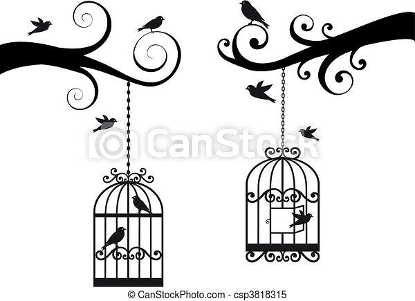 Dessin Oiseau En Cage cage d'oiseaux, oiseaux, vecteur. décoratif, oiseaux, branches, cage