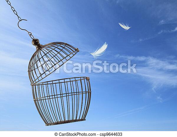 cage, liberté, concept., s'échapper - csp9644633