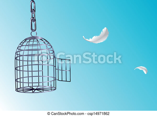 cage, ouvert - csp14971862