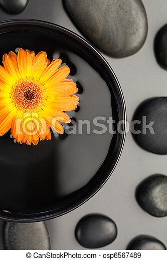 cailloux, bol, noir, entouré, flotter, fleur orange - csp6567489