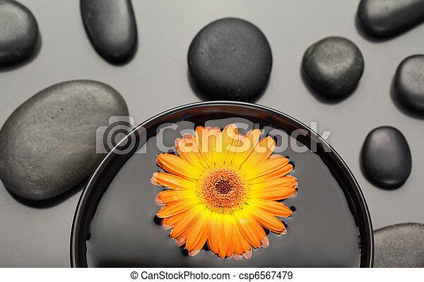 cailloux, bol, noir, gerbera, entouré, orange, flotter - csp6567479