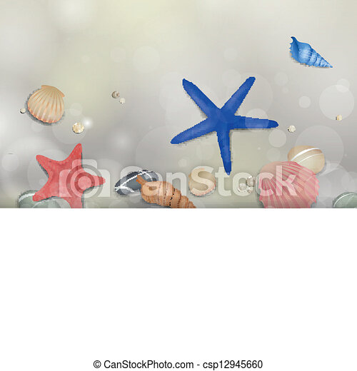 cailloux, vecteur, starfishes, seashells - csp12945660