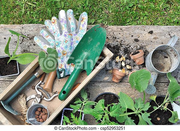 Herramientas de jardinería en una caja - csp52953251