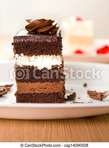 Cake - csp14090508