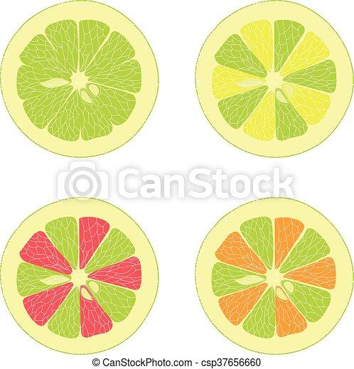 Limón, lima, naranja, pomelo rosa - csp37656660