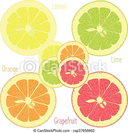 Limón, lima, naranja, pomelo rosa - csp37656662
