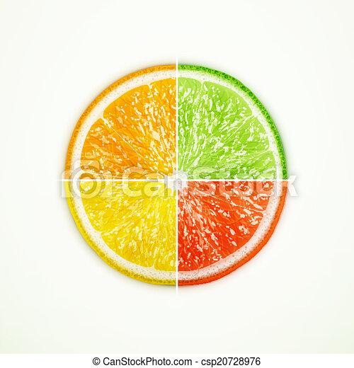 Calce Arancia Pompelmo Limone A Spicchi Vettore Limone