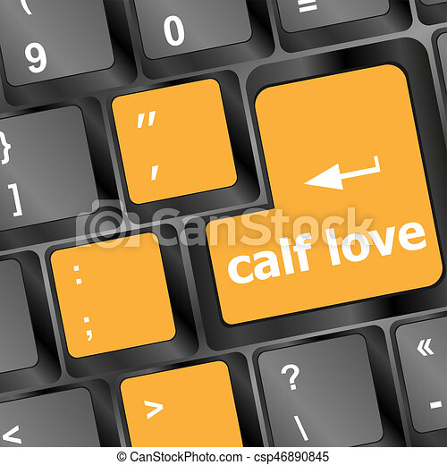 calf love words showing romance and love on keyboard keys - csp46890845