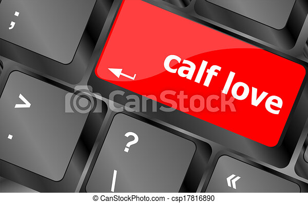 calf love words showing romance and love on keyboard keys - csp17816890
