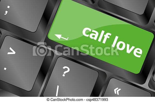 calf love words showing romance and love on keyboard keys - csp48371993