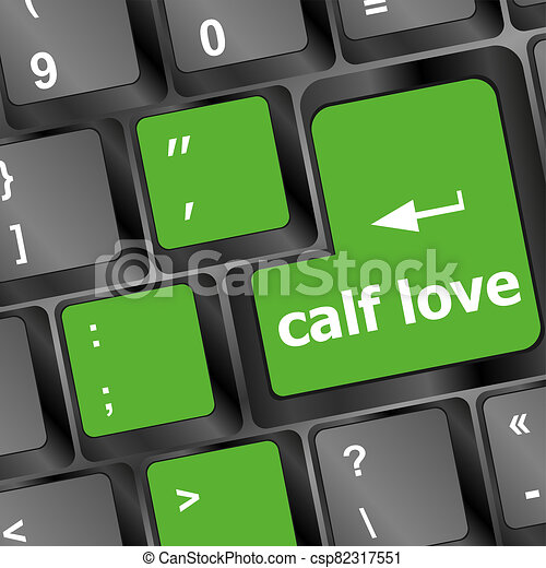 calf love words showing romance and love on keyboard keys - csp82317551