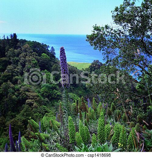 California Hillside - csp1418698