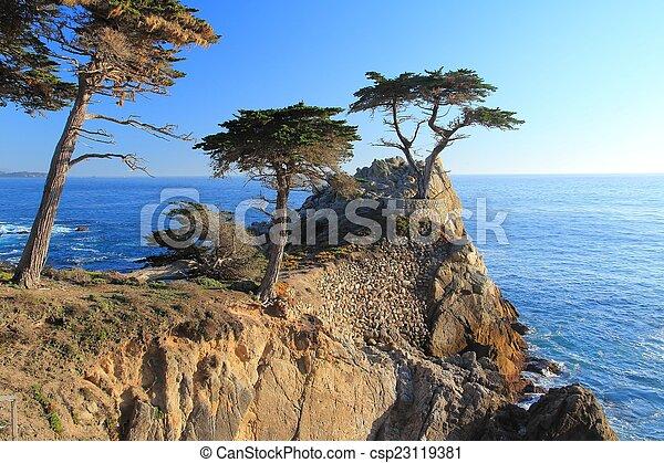 California - csp23119381