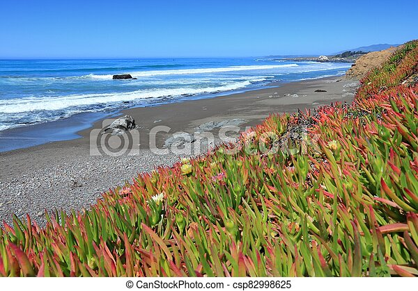 California - csp82998625