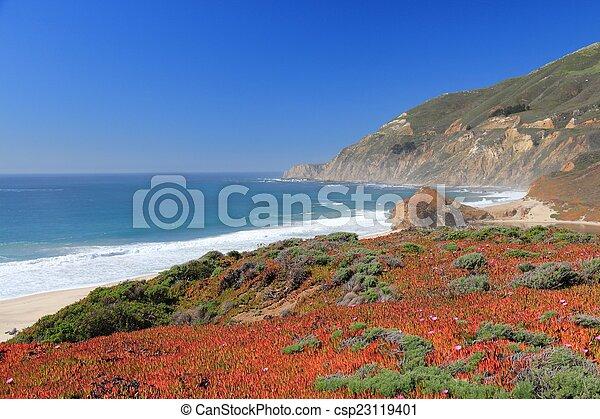 California - csp23119401