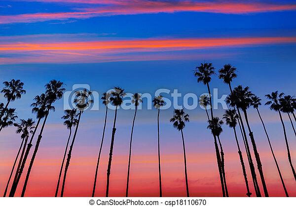 California sunset Palm tree rows in Santa Barbara - csp18110670
