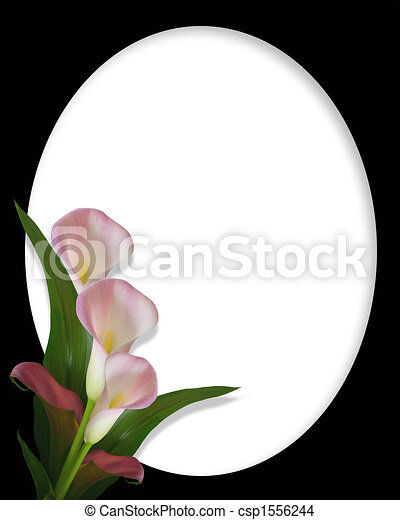Calla Lilies Pink Border On Black Oval Image Composition Of Pink