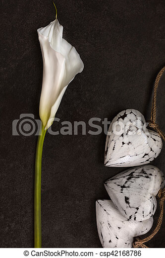 Calla lily with wooden hearts decoration on dark background, top view - csp42168786