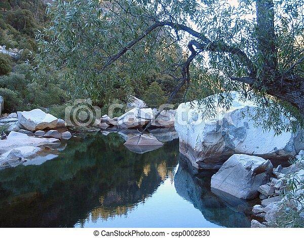 Calm place - csp0002830