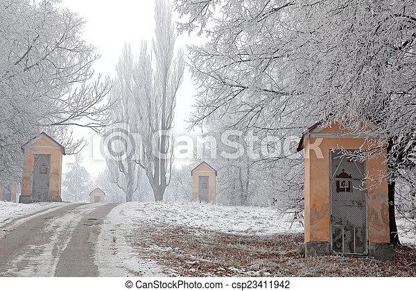 calvary, 冬の性質 - csp23411942