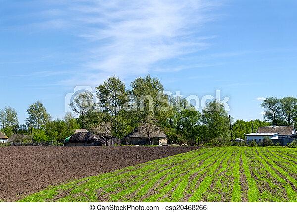 camas, primavera, tiros, paisagem, rural - csp20468266