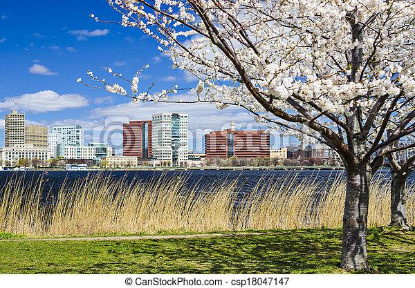 Cambridge, Massachusetts - csp18047147