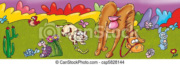 camel, cat, animals, turtle, grass, - csp5828144