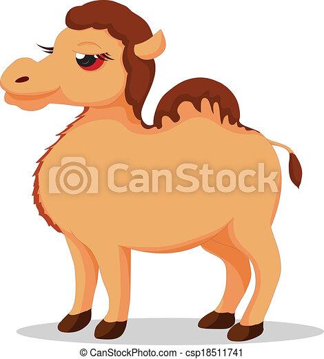 camel - csp18511741