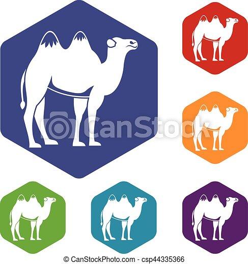 Camel icons set - csp44335366