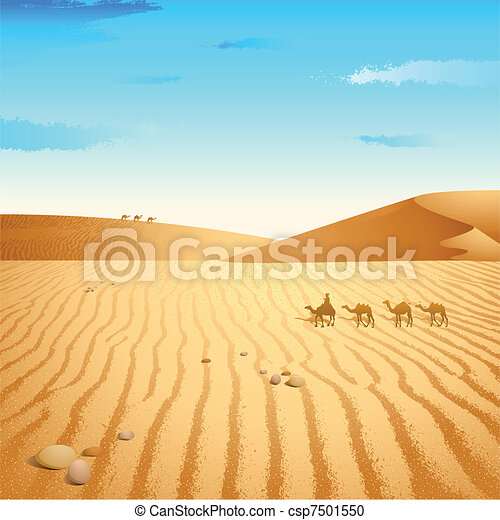 Camel in Desert - csp7501550