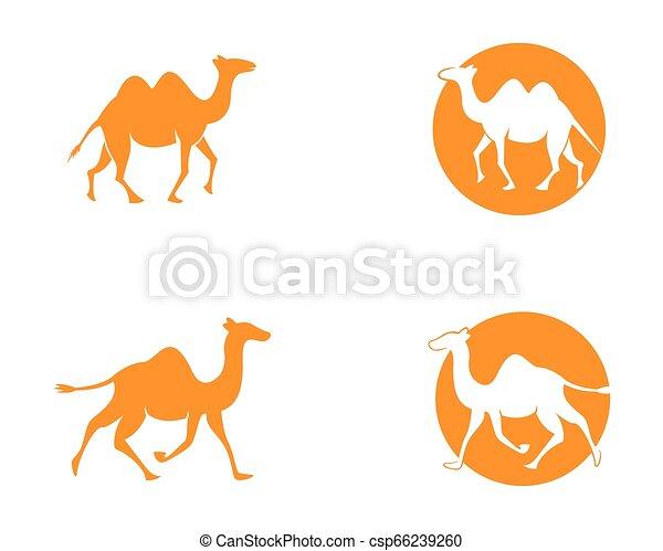 Camel logo template - csp66239260